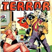 The Black Terror No. 24