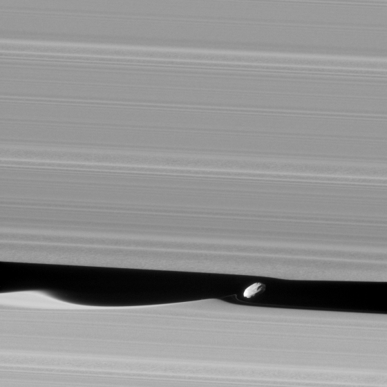 Dimunutive Daphnis drifts through the Keeler Gap in Saturn's A ring.  NASA / JPL-Caltech / Space Science Institute